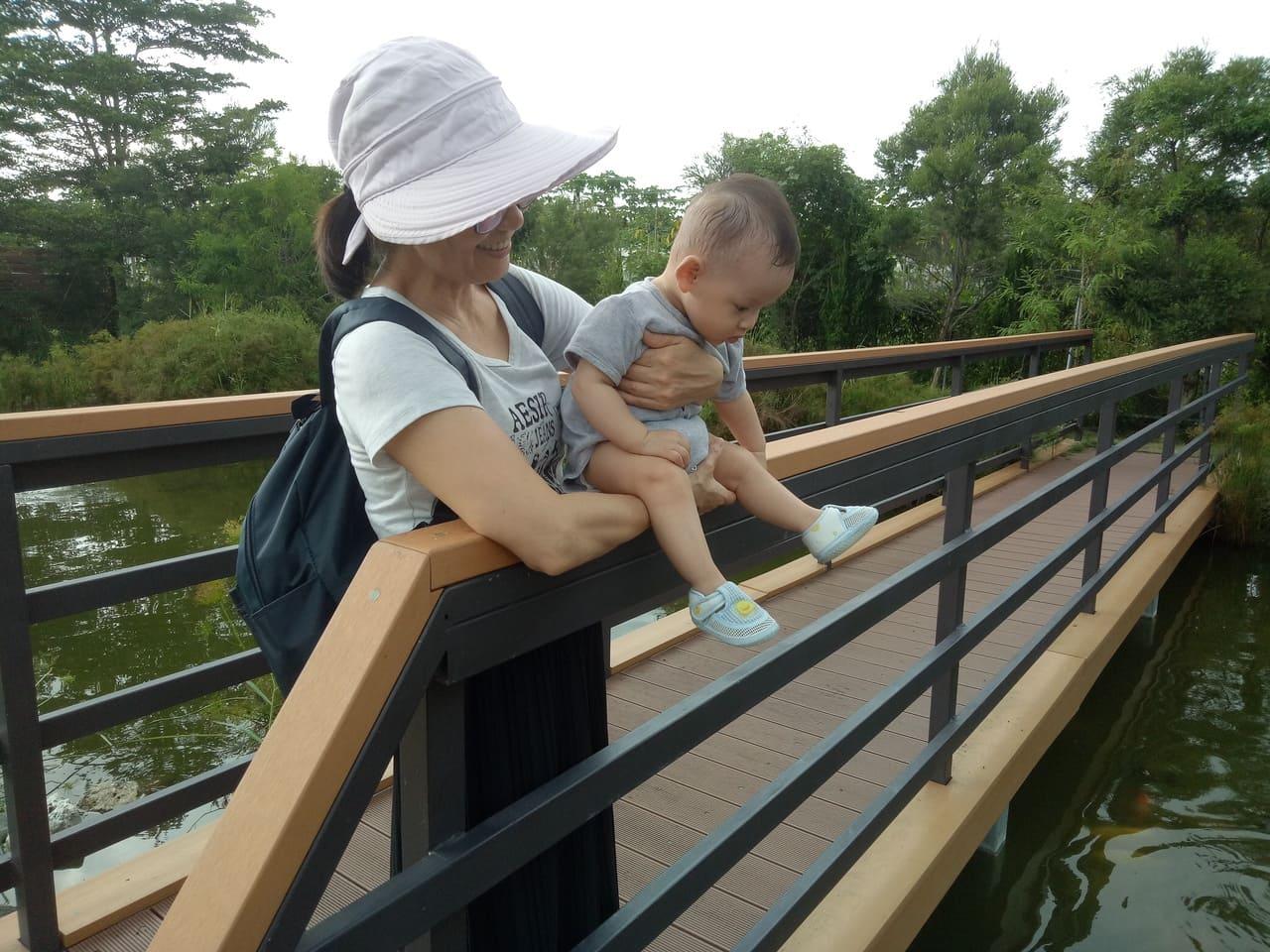 艾米達精靈谷茶樹莊園魚池