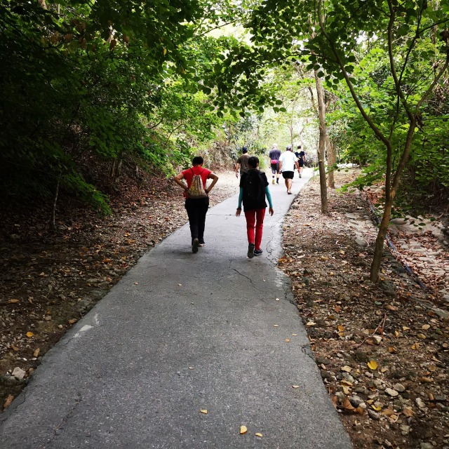 大崗山生態步道