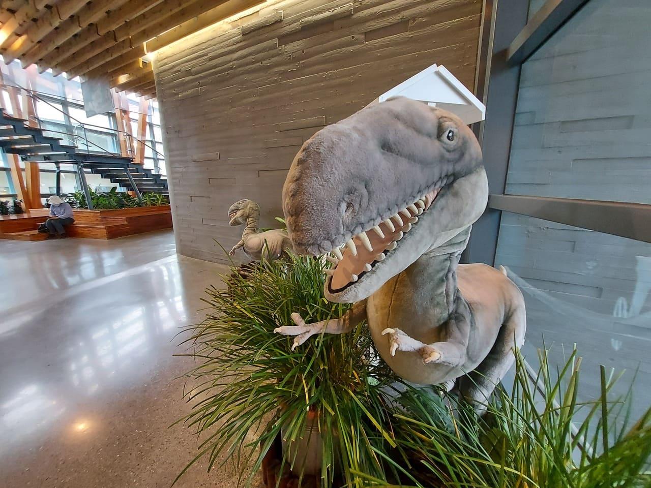 左鎮化石園區自然史教育館